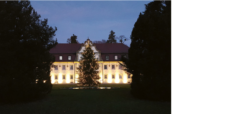 Abb. zu Zauberhafte Weihnachtswelt im Jagdschloss